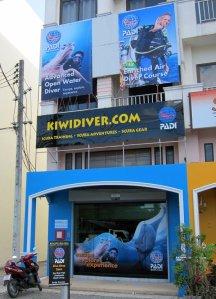 Kiwi Diver