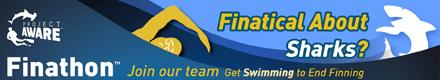 finathon-banner1