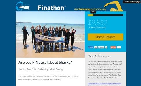 Finathon Website