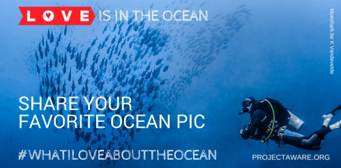 Project AWARE - What I Love About the Ocean