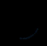 ceningan resort logo