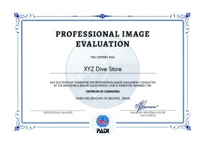 Professional Image Evaluation certificate