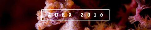 ADEX Singapore 2016 - Logo
