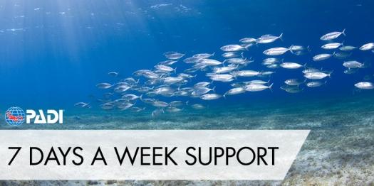 7-days-week-support