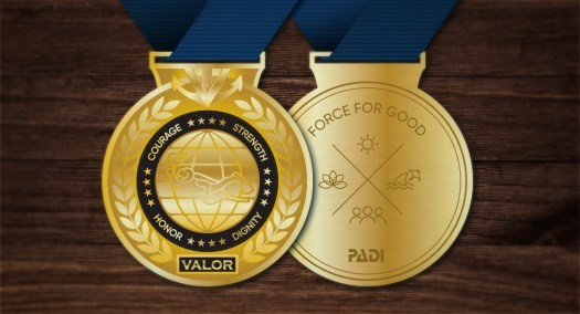 Medal-Medal of Valor- Diving