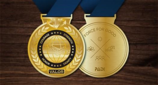 Medal-Medal of Valor- Diving